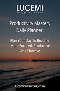 Productivity Planner by Mark Pettit of Lucemi Consulting